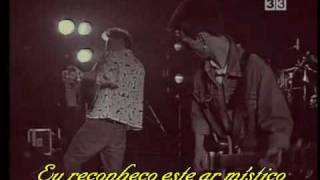 The Smiths - Miserable Lie (Traduzido)
