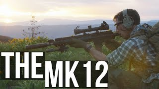 The MK12 SPR, SOCOM rifle for Designated Marksman