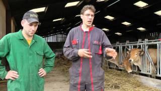 Paroles d'éleveurs : à quoi sert un technicien Bovins Croissance ?