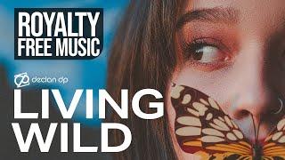 Declan DP - Living Wild (Royalty Free Music)