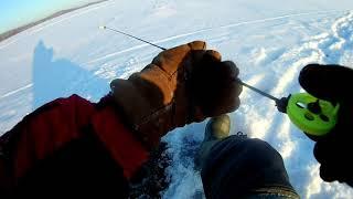 Пробую ловить на ПАПУАСА Рыбалка с удочкой ручной работы на водохранилище Зимняя рыбалка