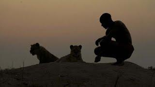 Tiermythen - Im Auge des Löwen [Doku]
