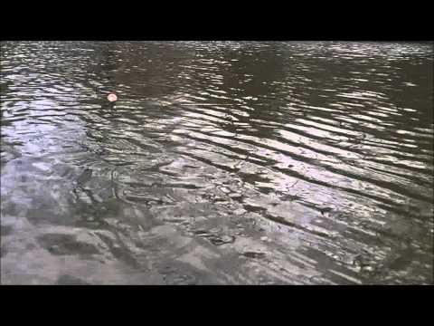 Fishing With The Fishin' Buddy