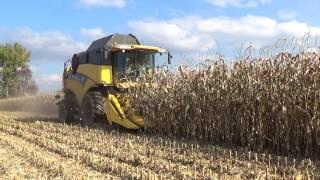 Video Pokazy zbioru poletek pokazowych  kukurydzy firmy Pioneer w  Gr. Matuszek download MP3, 3GP, MP4, WEBM, AVI, FLV November 2017