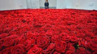 В СНГ заваливают женщин цветами