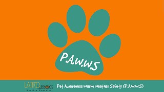 Latino Lubbock Magazine - Pet Awareness Warm Weather Safety (P.A.W.W.S) Series, Episode 1