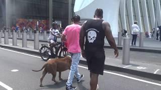 THE HULK LIFE: Ground ZERO this guy was trying so hard to PHOTO BOMB HULK!!