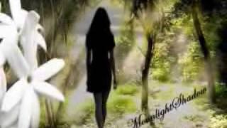 Filha das ervas - Ana Moura