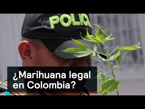 ¿Marihuana legal en Colombia? - Foro Global