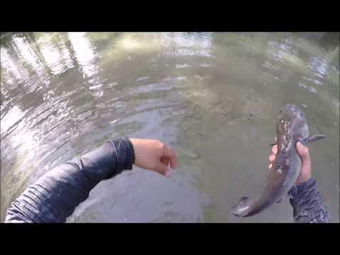 Fly Fishing Through A BEAUTIFUL TEXAS RIVER*******