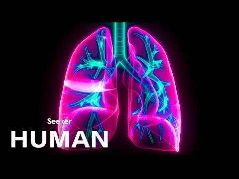 The Hidden Physics Behind Your Breath