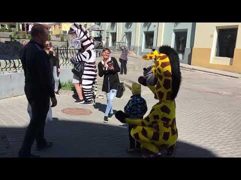 Жираф кусает за голову! Жесть! Казань. Баумана. 25 Мая. 2019