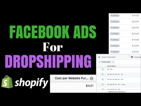 Facebook Ads For Shopify That Actually WORK (Dropshipping)