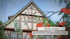 Michlshof am Main - Ferienwohnung Pension Ferienhaus Appartement Urlaub Bayern