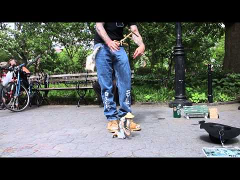 My Blythe Doll, (Chantal) meets legendary puppets Stix & Larry at Washington Square Park NYC