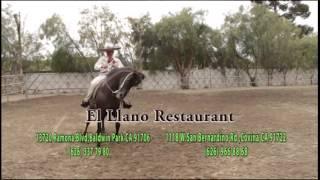 El Llano restaurant # 2