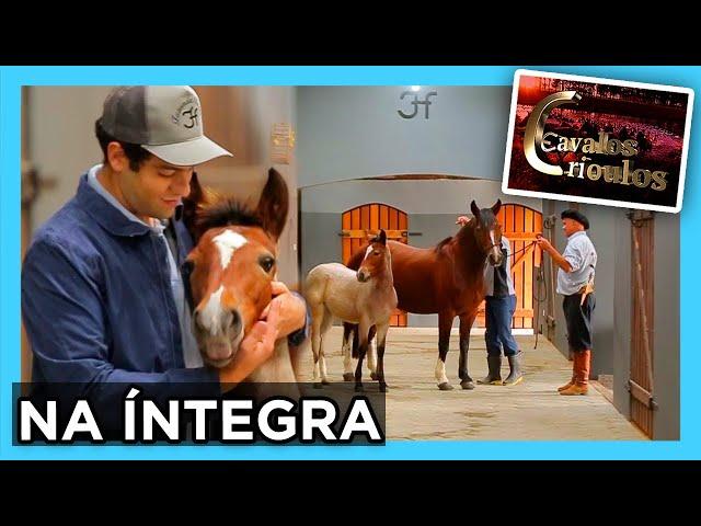 INÉDITO - Programa na Íntegra 23/05/2021