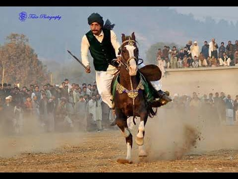Top Best Horse Riders Showing Horse Riding Skills & Horse Riding Information.