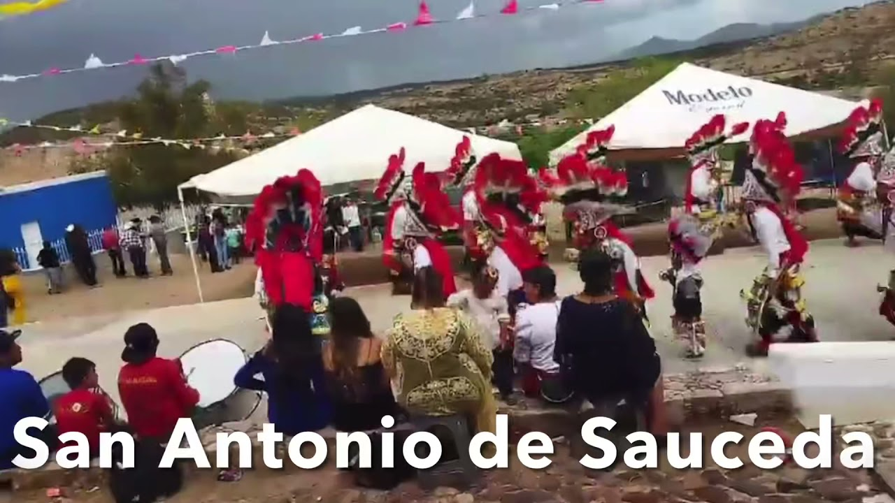 Bailes de Zacatecas - San Antonio de Sauceda
