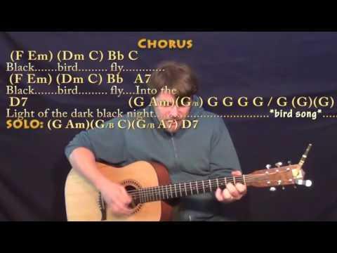 Blackbird (The Beatles) Strum Guitar Cover Lesson with Chords/Lyrics
