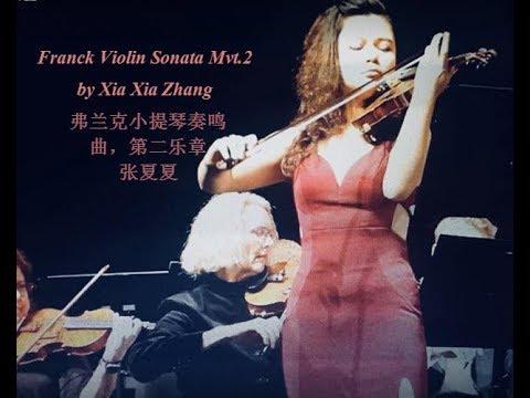 Xia Xia Zhang - Esteemed Violinist