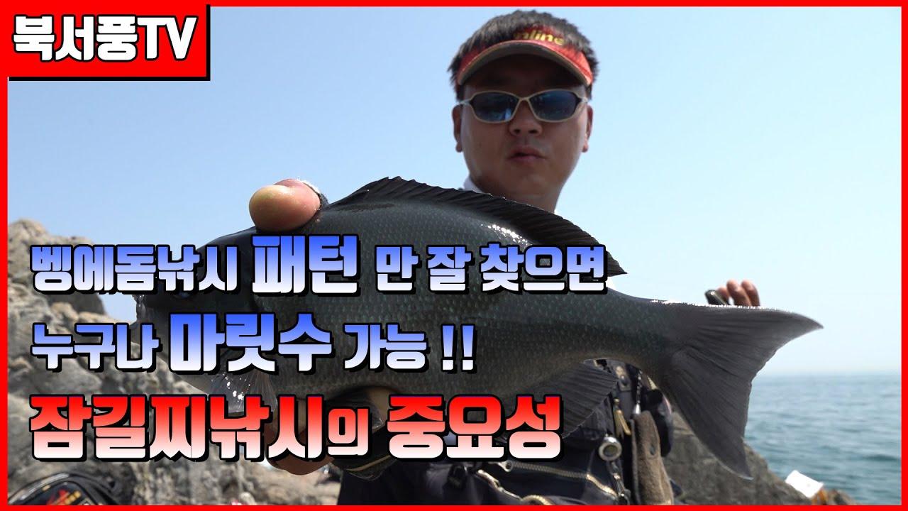 북서풍TV] 패턴만 잘잡으면 누구나 마릿수 벵에돔 낚시/잠길찌낚시 (opaleye fishing sea fishing クロメジナ)