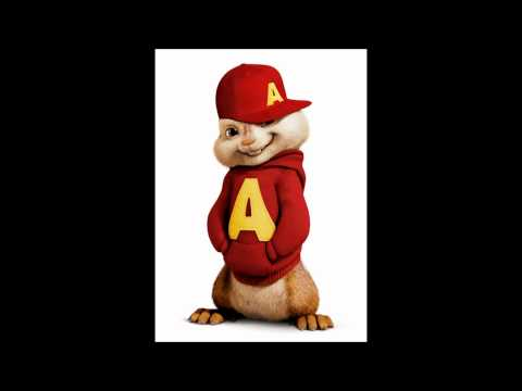 baggy trousers chipmunk