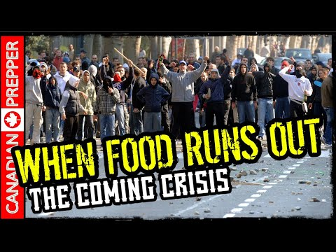 warning:-the-coming-food-crisis-|-be-ready-2019