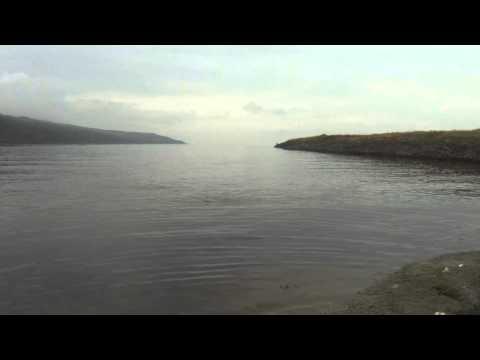 Magic mullet videó letöltés