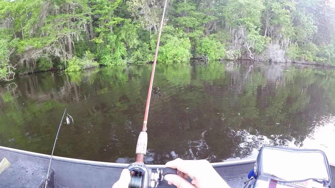 Bass Fishing Lake Talquin Youtube