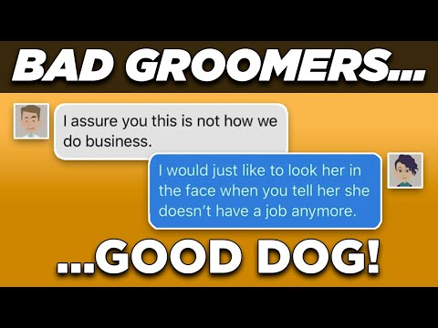 BAD PET GROOMERS Stupidly Shave Puli Dog's Coat || Not Always Right Text Stories