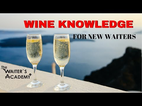 Wine tutorial for new waiter training! Basic knowledge. Restaurant service! How to be a good waiter!