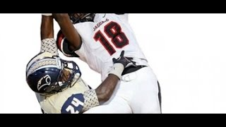 2015 WR Dahu Green 2014 season highlight remix