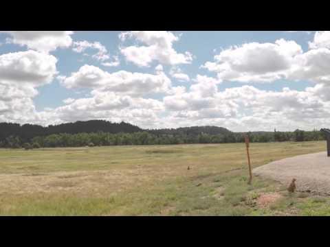 RV Life-Prairie Dog Town
