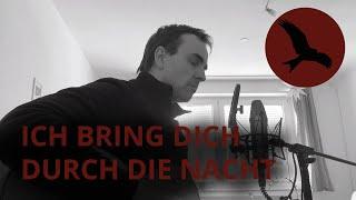 Ich bring Dich durch die Nacht –Reinhard Mey–Akustik Cover