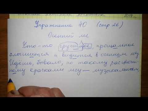 Упр 40 стр 26 Русский язык 5 класс 1 часть Мурина 2019 гдз