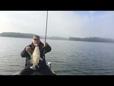 White Perch Fishing On Lake Monticello In South Carolina