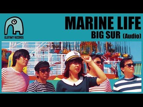 MARINE LIFE - Big Sur [Audio]
