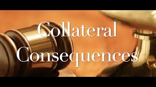 The Behan Law Group, P.L.L.C. Video - Collateral Consequences