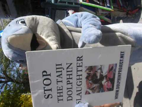 Japan Dolphin Day - Global Protest Against Dolphin Slaughter in Taiji, Japan - Denver, CO