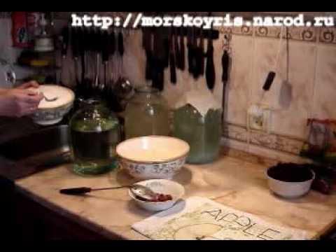 Рисовый гриб: свойства, как вырастить, рисовый гриб для