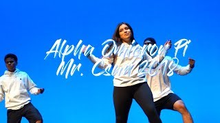 Alpha Omicron Pi - Mr. Csun 2018
