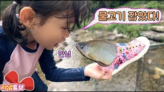 집 앞 계곡에서 신발로? 낚시했어요! 라임가족 일상 여행 Fishing in the valley|Lime Family Travel V-Log | LimeTube
