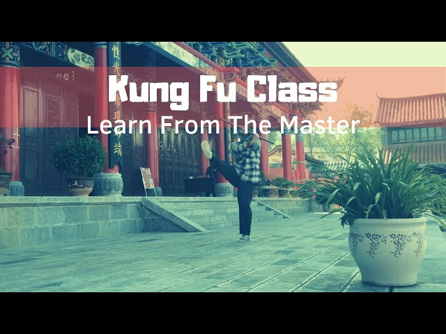 Internal Martial Arts Class in China