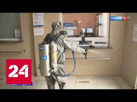 """""""Я уже здоров"""" и стрижки под ноль больше не актуальны: коронавирус можно победить - Россия 24"""