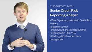Featured Job: Senior Credit Risk Reporting Analyst (JOB-96)