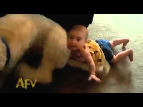 Lustige baby Pannen . versuche nicht zu lachen und