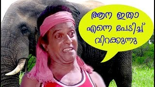 Kuthiravattom Pappu Super Hit Comedy Scenes  Best Comedy Scenes  Malayalam Comedy Hits