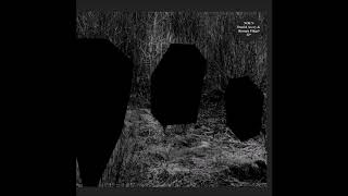 Noun (Daniel Avery & Roman Flügel) - Team Silent [PLAYRJC059]