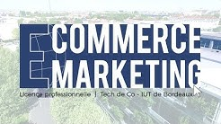 Présentation Licence Pro E-commerce et Marketing Numérique de Bordeaux